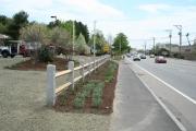 Granite Posts with Cedar Rails